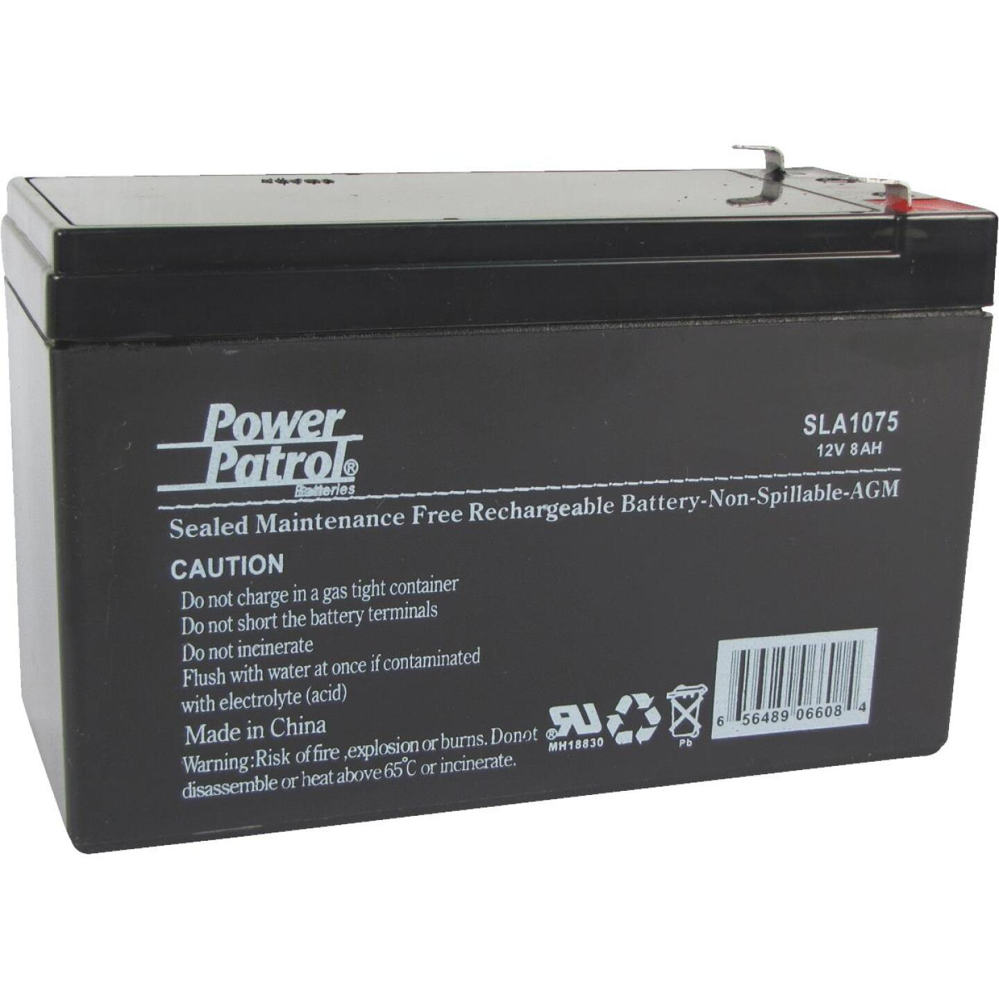 Interstate All Battery Power Patrol 12V 8A Security System Battery Image 1